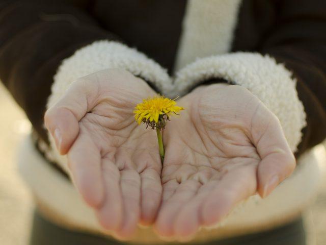 Comment maitriser le pouvoir de la pensée positive